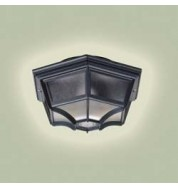 Yg-0100-Bl Outdoor Light